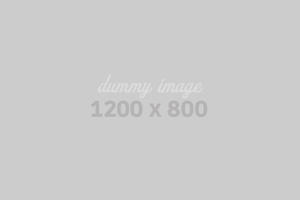 dummy1200800